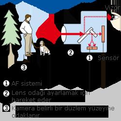 AF Sistemi (Otofokus) ve Canlı Önizleme AF ile Vizör AF Arasındaki Farklar