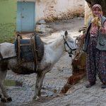 Bir köy hikayesi – Sarıyurt