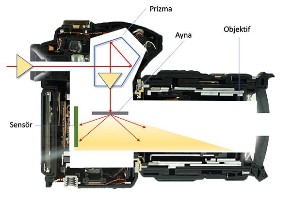Uzun pozlamalarda ışık kaçakları neden oluşur, nasıl önlenir?