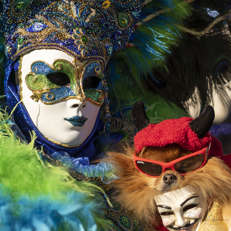 Venedik Karnavalı 2020