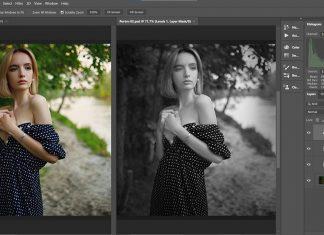 Hue/Saturation Adjustment Layerlar kullanarak Siyah Beyaz Fotoğraf elde etmek