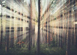 Photoshop'da ışık demeti oluşturmak - Light-ray Creation