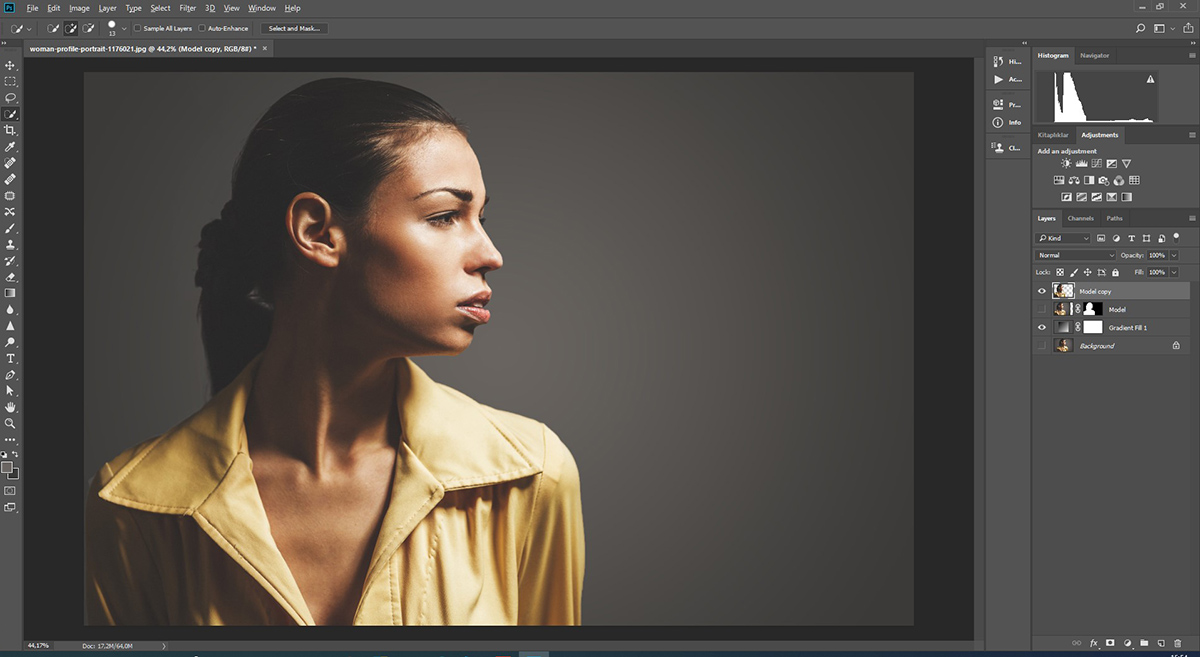 Photoshop'da Face-Cut ve Gradient Fill kullanımı - Bölüm 2